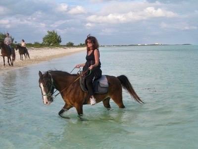 turks-and-caicos-horse-2-thegem-gallery-masonry Chicago luxury travel advisor